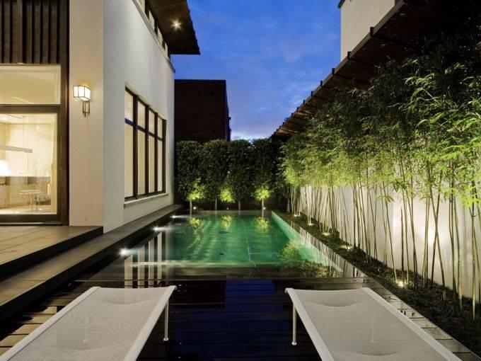 Bamboo Hedge Design